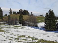 Alemannische Höhenbefestigung Gabis bei Roßhaupten