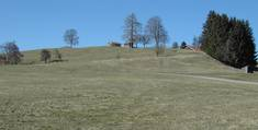 Burgstelle Hochegg bei Roßhaupten